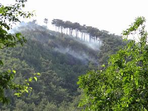 Photo: Джанхот встретил пожаром