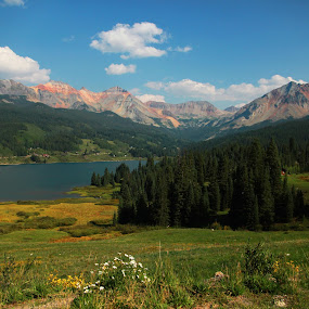 Trout Lake by Liesl Ross Photos - Landscapes Mountains & Hills ( wildflowers, mountains, sky, trout lake, lake, fields )