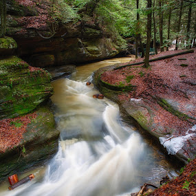 February Thaw by Jim Crotty - Landscapes Waterscapes ( stream, ohio, jim crotty, hocking hills, landscape )