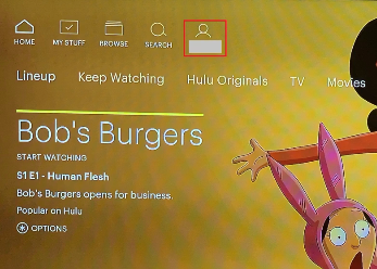 How to switch Hulu profiles on roku 1