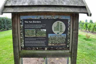 Photo: Fan Borders RHS gardens Wisley