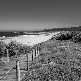 crowded by Paulo Rodrigues - Black & White Landscapes ( b&w, afife, lanscape, street, beach )
