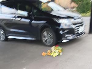 オデッセイ RC2 アブソルートEXのカスタム事例画像 りおさんの2020年12月04日00:46の投稿