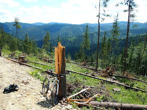 Photo: Podjazd żółtym szlakiem bardzo szybki.