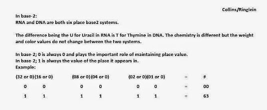 Photo: In base2 systems: T/U = 00, C = 01, A = 10, G = 11.  Base-2 color progression nucleotide codon base half state cross section values switch 'on' or 'off' to create all of the possible codon possibilities: each of the 16 RNA pairs, the 64 DNA codon triplets and the 64 mRNA codons DNA codes for to make a protein is unique in pattern and function -- and yet part of the same system which can be mapped across point, line. plane, shape, scale and dimension with a base2 system color progression.  The balances are interesting.  The RNA base pairs considered stable enough to code for an RNA are all base2 system inverses. And when DNA Makes mRNA: 27 mRNA codons (3³) do not have a uracil in them. 27 mRNA codons (3³) have one uracil in them. And 09 mRNA codons have two uracils in them (3²). One RNA codon (0) UUU, has 3 uracils.  Question: Does (0) UUU 000000 act as a biological constant or mathematical morphism which triggers a system comprised in perfect thirds in a base2 system:1-21, 22-42, 43 to 63?
