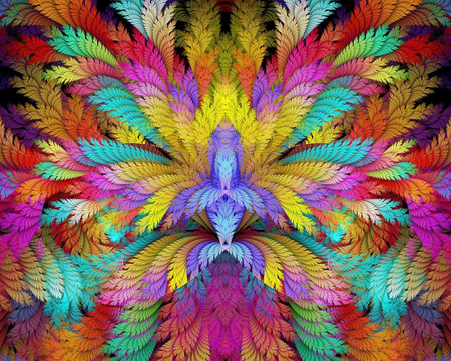 Linear ESplits Feathers by Peggi Wolfe - Illustration Abstract & Patterns ( digital, gift, feather, linear, color, wolfepaw, bright, pattern, abstract, décor, print, split, unique, esplit, fractal, illustration, unusual, elliptic, fun )