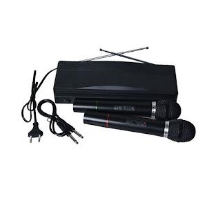 Set 2 microfoane wireless cu receiver AT-306