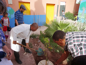 Photo: Al Khansaa Primary school, Ouarzazate. Morocco. We work with the Groasis Waterboxx to plant trees.