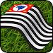 Campeonato Paulista 2018 icon