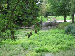 Photo: Fonsomme : La source de la Somme dans son environnement.