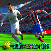 Guide PES 14 Tips