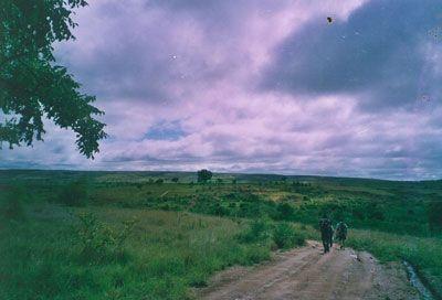Madagascar - Ritorno dal parco dell'Isalo