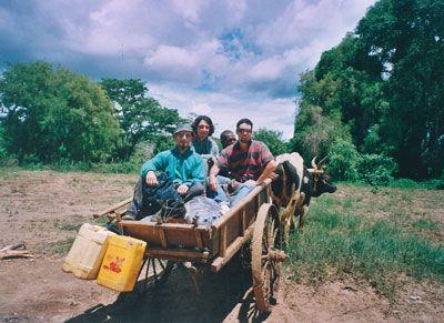 Madagascar - Gli eroi in partenza sul carretto trainato dalla zebù alla fine del viaggio in canoa