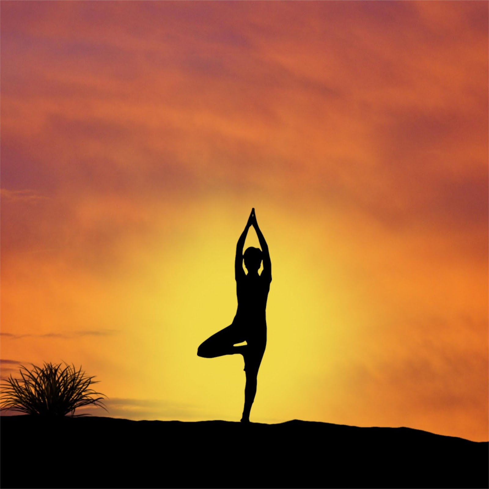 atardecer yoga