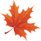 🍁 🍂🍃 Autumn Maple Leaves 3D