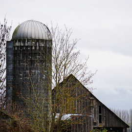 Barn  by Todd Reynolds - Buildings & Architecture Decaying & Abandoned