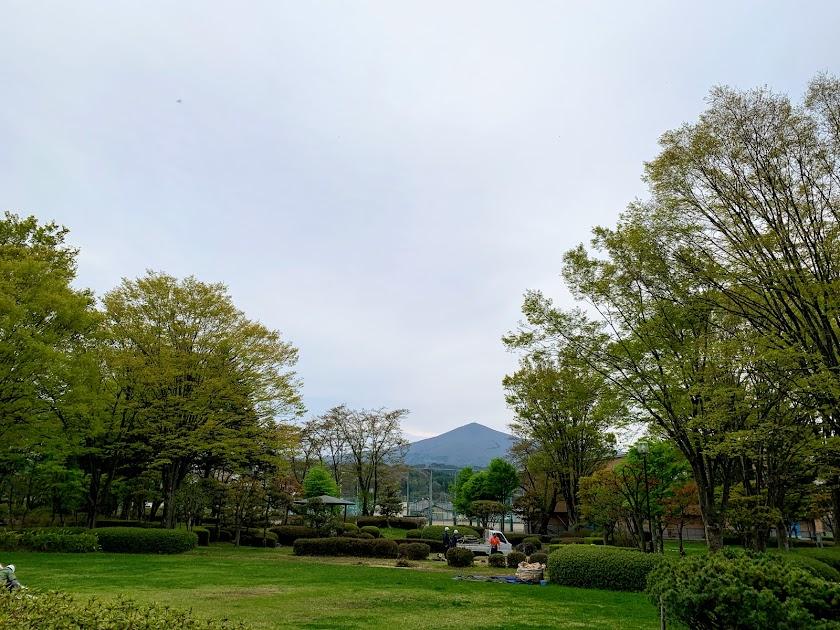 渋民公園から見た姫神山