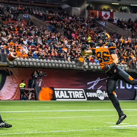 Making The Catch by Garry Dosa - Sports & Fitness American and Canadian football ( sports, jumping, teams, players, professionals, cfl, black, football, people, orange, red, white, indoors, action, stadium )