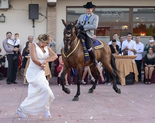 Fotógrafo de bodas Elena Ortega mateo (ortegamateo). Foto del 25.05.2015