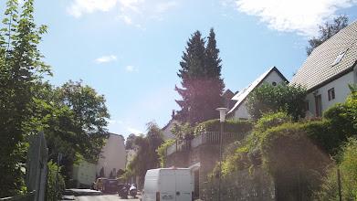 Photo: Oberer Abschnitt der Straße ,Elfriedenhöhe'.