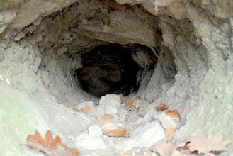 Photo: Üregek és párkányok a Macska-lyuk külső sziklafalán.