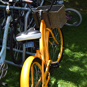 Ruth by Steve Hayes - Novices Only Objects & Still Life ( license plate, bike, basket, yellow, chautauqua, bicycle,  )