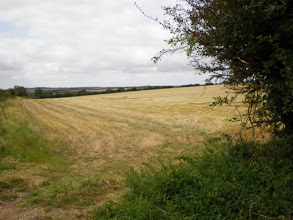 Photo: Norfolk Coast Path - From Warham to Wiveton - On the way to the Coast Path