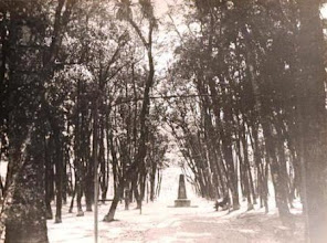 Photo: Bosque do Imperador, aos fundos do Museu Imperial, em frente ao Palácio Grão-Pará. Este monumento que aparece na imagem ainda se encontra lá. Foto de R. Haack. Década de 30