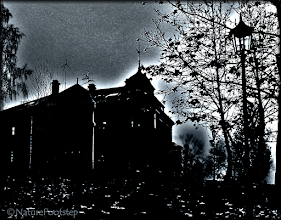 Photo: Darkness © NF PhotoArt 151118 http://nfbild2.blogspot.se/2016/09/darkness.html  Our city hall as a scary castle for AEDM © NF Photo 151118, © NF Photo 151120  http://nfbild2.blogspot.se/2015/11/my-town-random-images-from-last-week.html