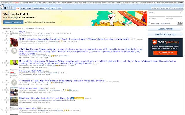 Reddit Politics Blocker Lite