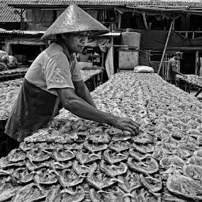 Drying fish by Basuki Mangkusudharma - People Street & Candids ( drying, fish, fisherman )