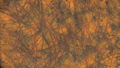 "Photo: ""Graminées"". Lazure sur médium.97x66cm, format horizontal."
