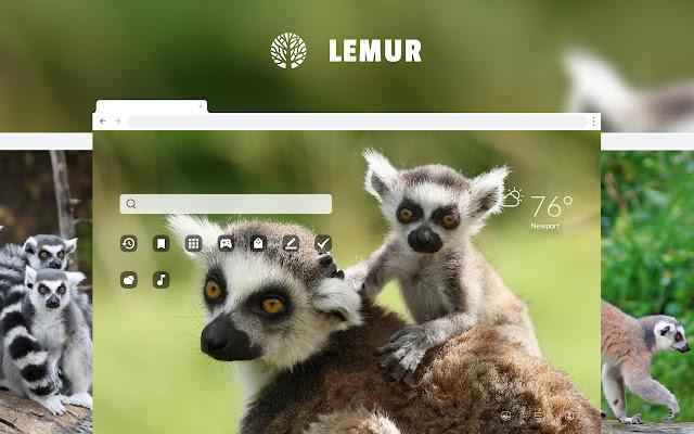 Lemur HD Wallpapers New Tab Theme