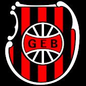 G.E. Brasil