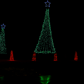 by Pam Satterfield Manning - Public Holidays Christmas ( red, digital photography, green, holidays, public holidays, abstract, christmas, trees, lights, dark background, digital art,  )
