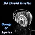 DJ David Guetta All Music icon