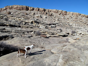 Photo: Boulder and Torrey on the hunt for some rock art