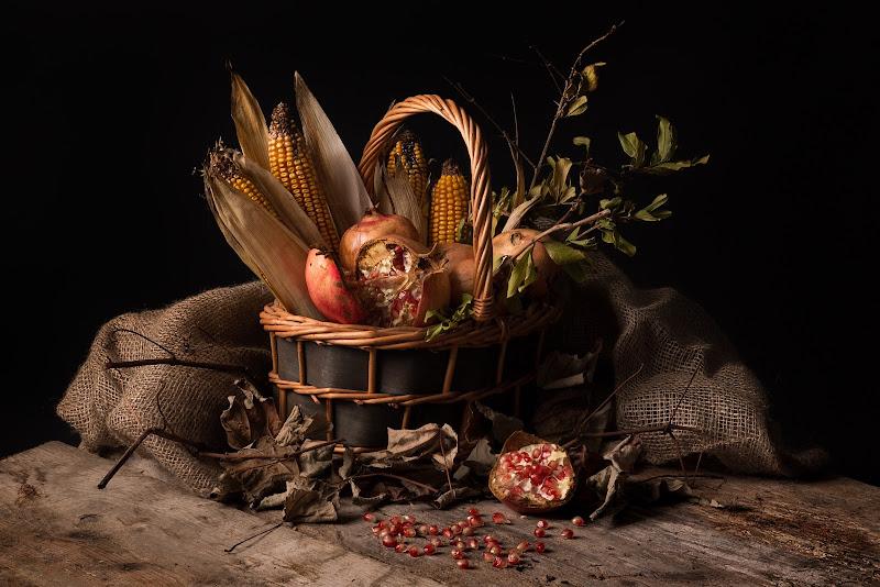 Profumi d'autunno  di Nico Angeli Photography