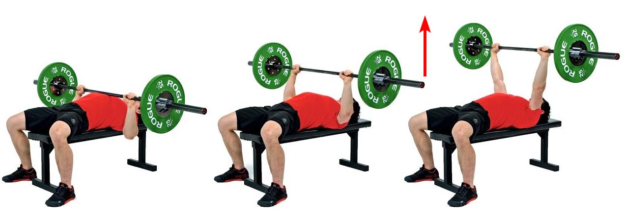 Wyciskanie sztangi leżąc (barbell bench press)