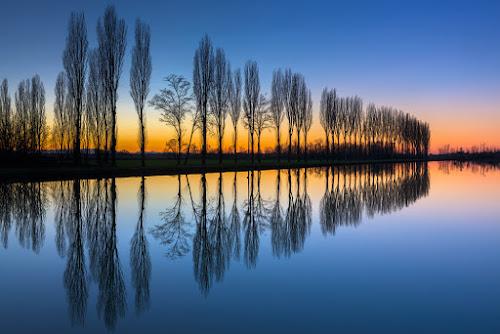 Poplars's symmetry by Roberto Melotti - Landscapes Sunsets & Sunrises ( reflection, roberto melotti, sunset, reflections, trees, long exposure, nikon d810, sunrise, symmetry, italy, poplars )