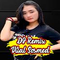 DJ PELUK ERAT TUBUHKU - TERBANG BERSAMAKU icon