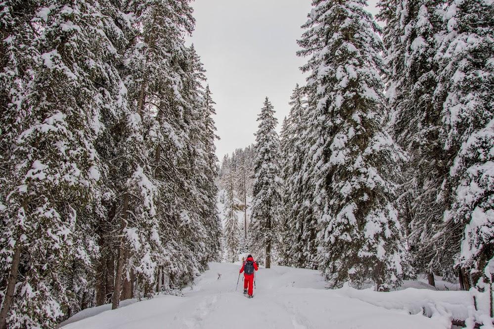 sneeuwschoenwandelen-oostenrijk