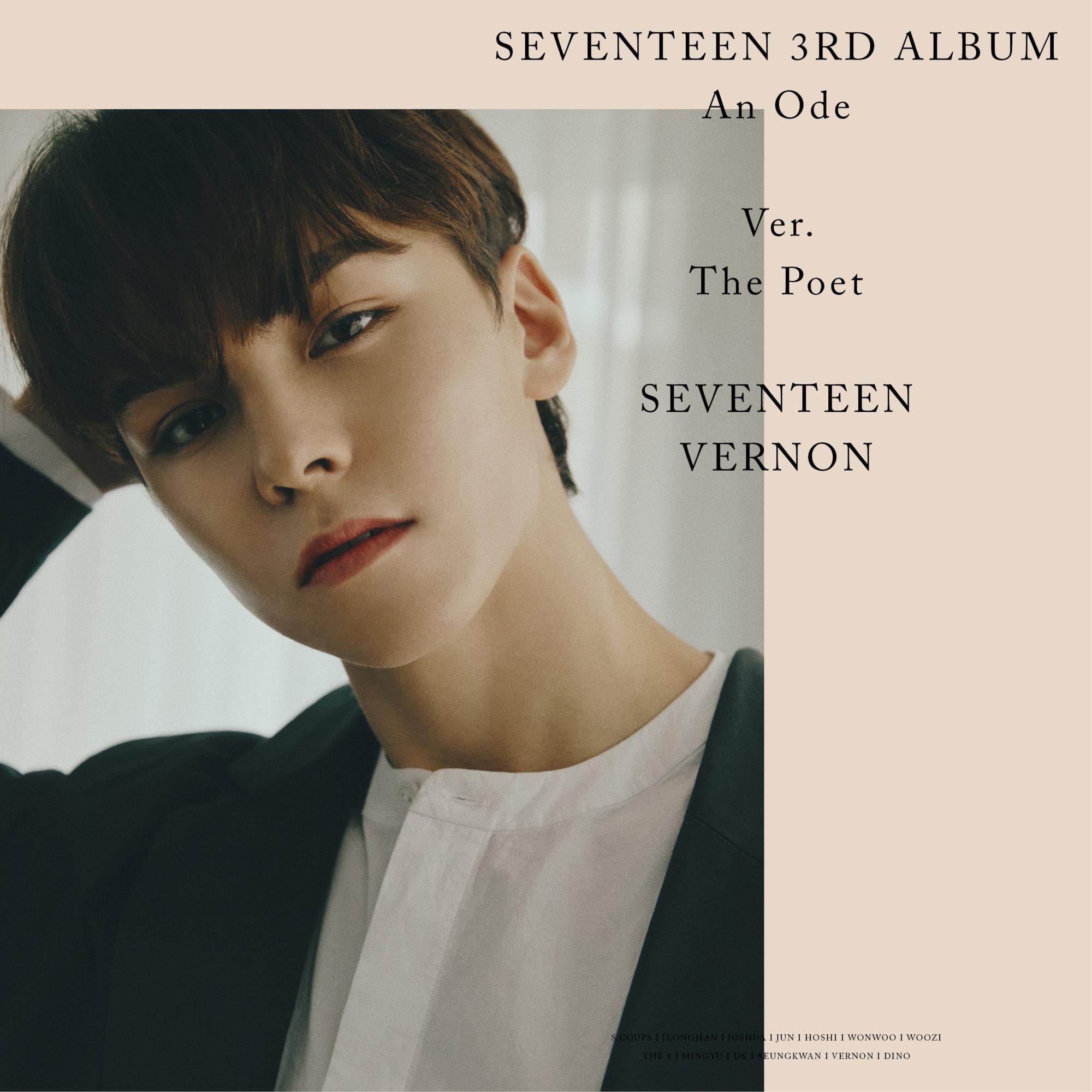 seventeen vernon 1