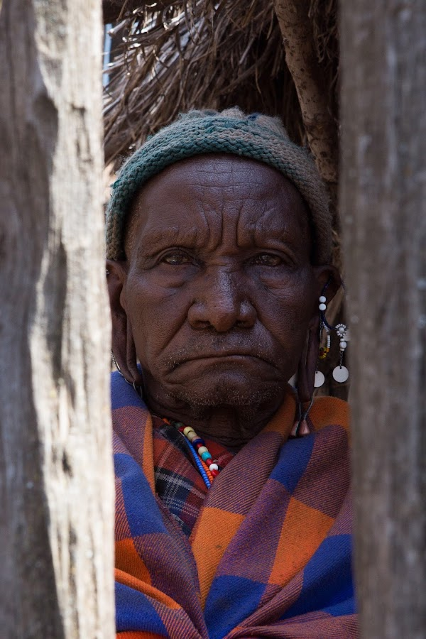 Maasai Elder by VAM Photography - People Portraits of Men ( elder, person, maasai, portrait, culture, man,  )