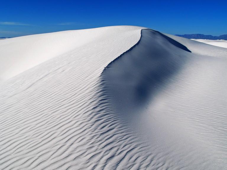 The Chihuahuan Desert