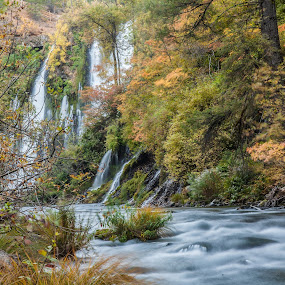 Burney Falls in, well, FALL! by Mike Lee - Landscapes Waterscapes ( burney falls state park, nature, burney falls, mcauthor burney falls state park, water, water fall, slow shutter, burney creek, falls, creek, moving water, outdoors, waterfall, california state park, slow exposure, river, shasta county,  )