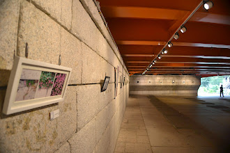 Photo: Open air gallery... Nothing stolen!