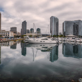 Embarcadero Marina Park North by Krasimir Lazarov - City,  Street & Park  City Parks ( san diego, city, waterscape, united states, cityscape, california, architecture )