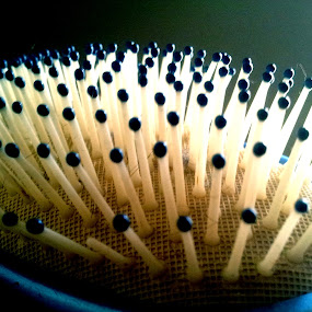 bristles by Tom Carson - Artistic Objects Other Objects