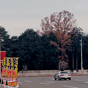 MR2  Ⅲ型 G-Limited BILSTEIN  packageのカスタム事例画像 颯貴 YDK回遊魚 ԅ(¯﹃¯ԅ)さんの2018年12月16日17:15の投稿